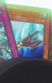 TGDrillFish-JP-Anime-5D.png