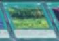 Forest-JP-Anime-AV.png