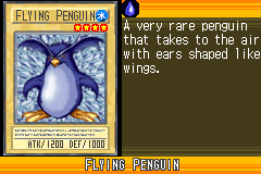 FlyingPenguin-WC6-EN-VG.png