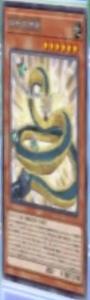 LinkbeltWallDragon-JP-Anime-VR.png