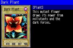 DarkPlant-SDD-EN-VG.png