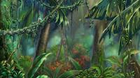 JungleField-JP-Anime-ZX-NC.png