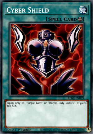 CyberShield-LDS2-EN-C-1E.png