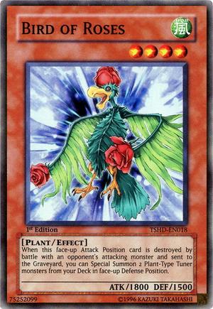 BirdofRoses-TSHD-EN-SR-1E.png