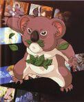 Des Koala (Character).jpg