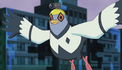 Pigeon (avatar).png