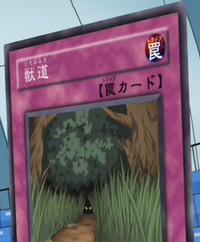 AnimalTrail-JP-Anime-GX.png