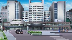 Den Hospital