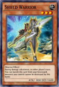 ShieldWarrior-DULI-EN-VG.png
