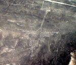 Lignes de Nazca Décembre 2006 - Colibri 2.jpg