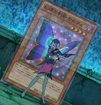 MorphoButterspy-JP-Anime-ZX.png