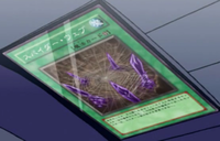 SpiderWeb-JP-Anime-5D.png