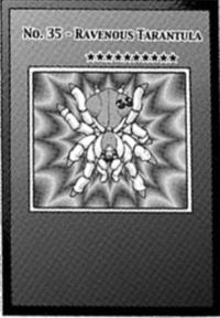 Number35RavenousTarantula-EN-Manga-ZX.png