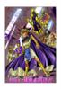 Yu-Gi-Oh! Duel 318 - bunkoban - JP - color.png