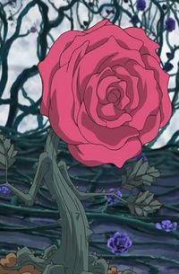 RoseToken-JP-Anime-5D-NC.jpg